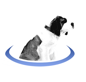 BerniePortal-Dog_logo_2017-1