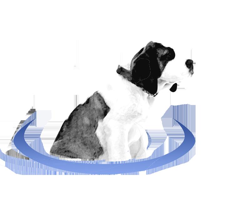 BernirPortal Dog logo